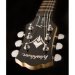 guitarra-washburn-win-14